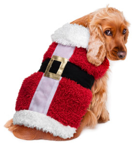 vs-9955-jolly-santa-suit